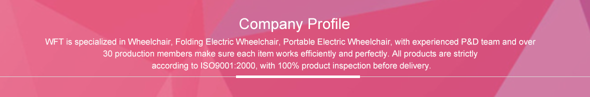 wofftown company profile